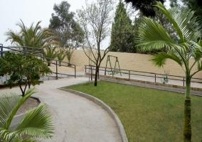 Jardín arbolado