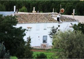 Vistas de la fachada en color blanco con terraza
