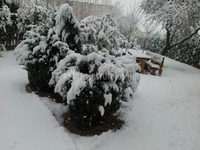 Casa rural el gaiter en aguaviva teruel for Jardin nevada