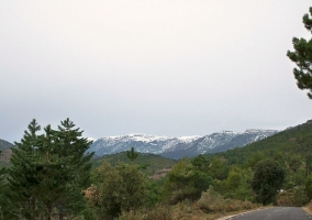 Sierra del Cujón