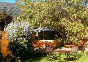 Jardín con mesa de madera
