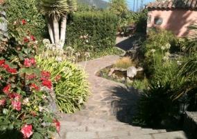 Camino de piedras con flores a los lados
