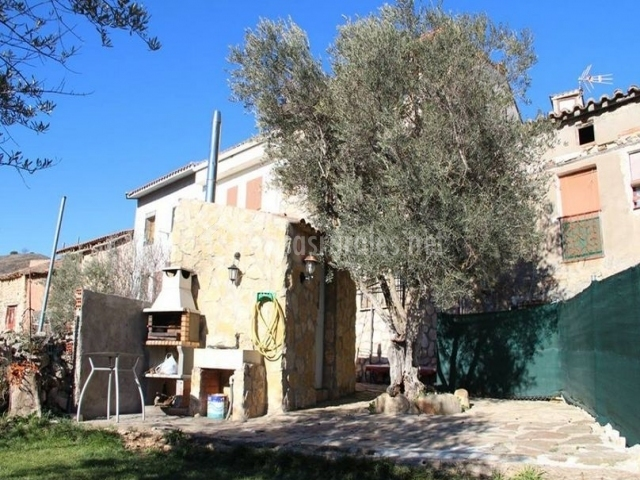 Vistas del exterior con olivo