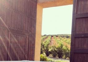 Piscina con las vistas al exterior