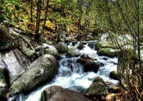 El río Jerte por el Valle
