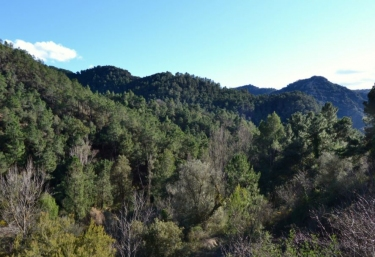 Masia de Matuta - Vall De Almonacid, Castellón
