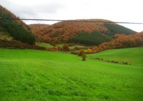 Los prados del Valle de Ultzama