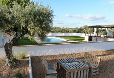 Casas rurales con piscina en fernancaballero - El olivar de albarizas ...