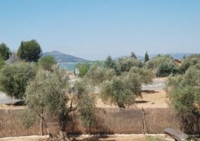 Vista de los alrededores del alojamiento