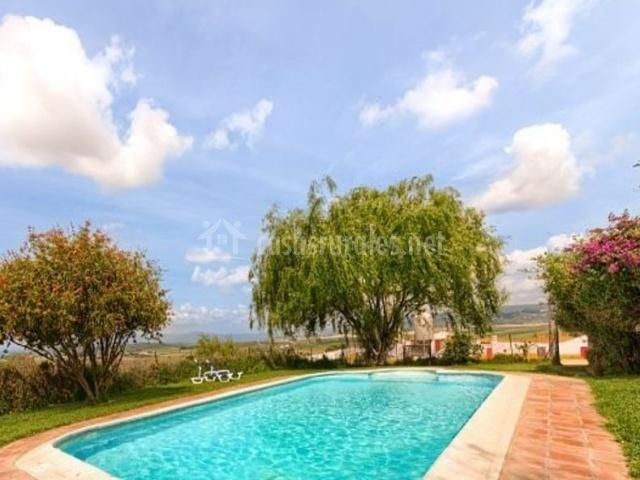 Amplia piscina rodeada de zonas verdes