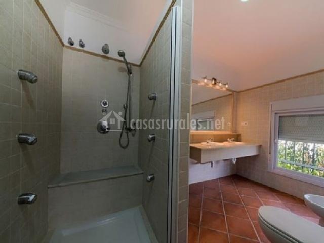 Aseo de la casa con espejo y su ducha