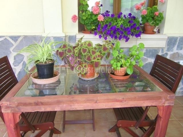 Mesa en el porche con sillas y plantas encima