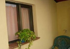 Vistas de la zona exterior con planta en la ventana