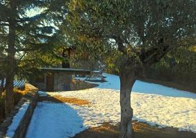 Sisquet con nieve