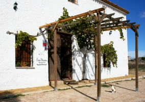 Puerta principal con plantas