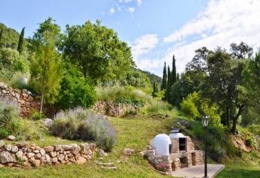 Mas de Vilella - Alcover, Tarragona