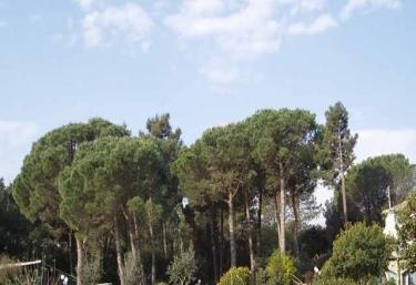 Mariona - Romanya De La Selva, Girona