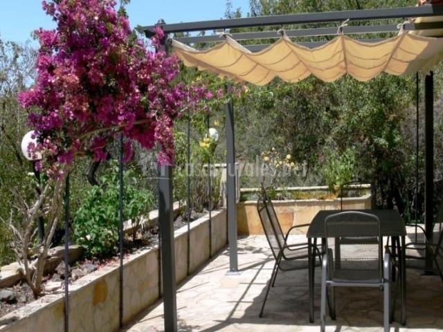 Vistas de la terraza con porche y mesa con sillas
