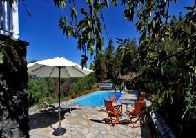 piscina + terraza