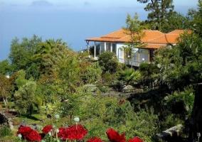 Vistas de las zonas de exterior con flores y plantas
