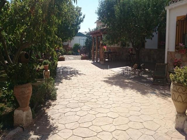 Camino de piedra como entrada a la finca