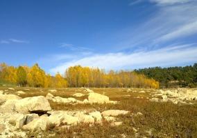 Otoño a la orilla del pantano