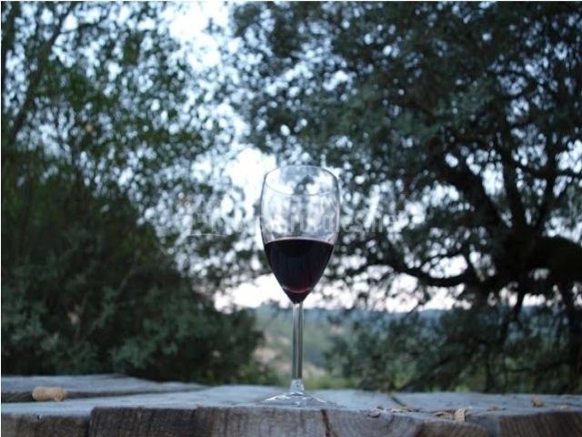 Vistas de la terraza y copa de vino