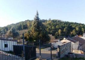 Vistas del jardín desde la casa
