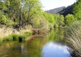 Río Estena en la Parque de Cabañeros