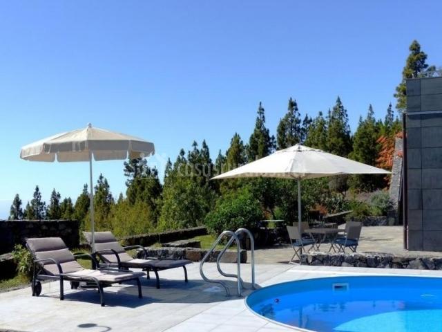 Vistas de la piscina con hamacas bajo las sombrillas