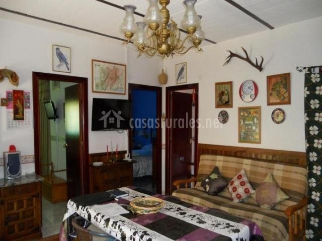 Comedor y sala de estar con lámpara de techo