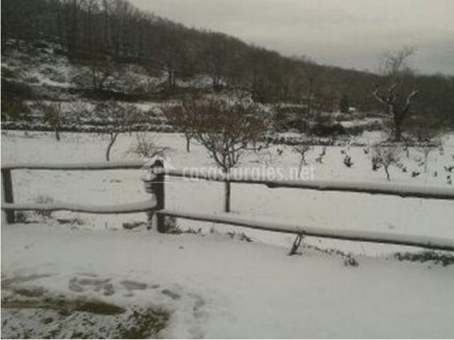 Vallado y vegetación cubierto de nieve