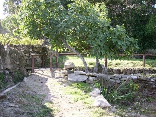 Zona exterior con pequeño arroyo