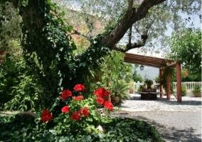 Flores y porche exterior de la casa rural