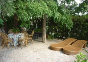 Mobiliario, árboles y tumbonas