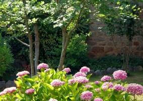 Vistas de las zonas verdes con flores