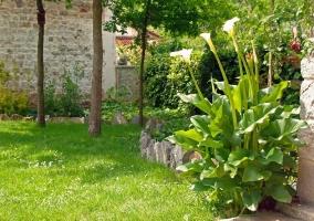 Vistas de las zonas verdes exteriores