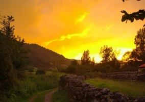 Zona de bosques con amanecer