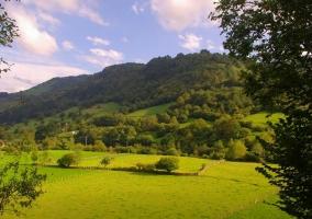Zona de prados en el entorno verde