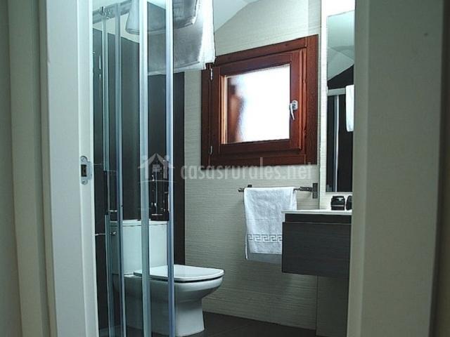 Cuarto de baño gris con plato de ducha
