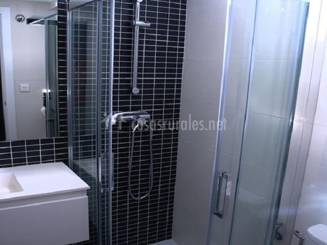 Cuarto de baño negro con plato de ducha