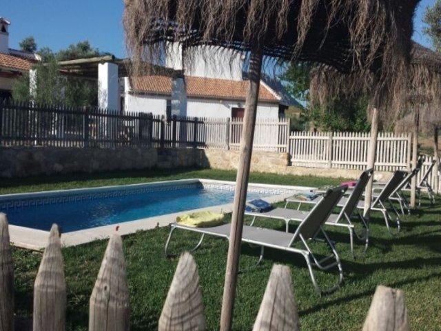 Jardín con piscina y tumbonas