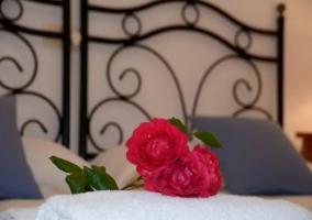 Dormitorio doble con rosas