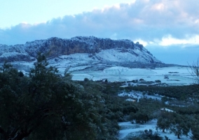Entorno nevado