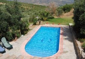 Amplia piscina vista desde la casa rural