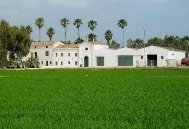 Isla de Buda - Sant Jaume D'enveja, Tarragona