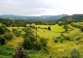 Campos de alrededor de Alpens