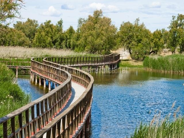 Parque Natural Tablas de Daimiel