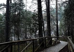 Ruta invernal hacia el Nacimiento del Río Cuervo