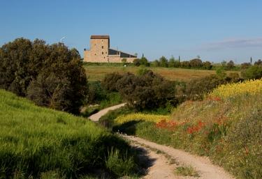 La Torre del Codina - Tarrega, Lleida